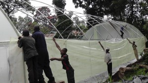 greenhouse going up for school feeding program